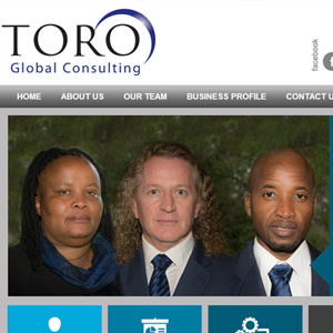 Toro Global Consulting Website by Citizen Design